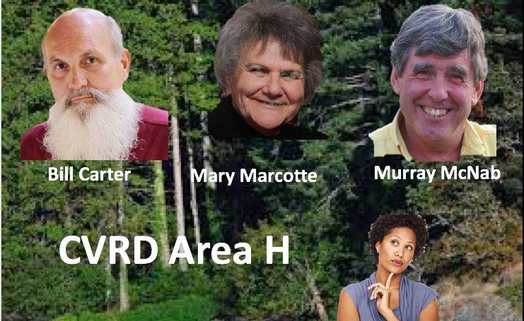CVRD Area H
