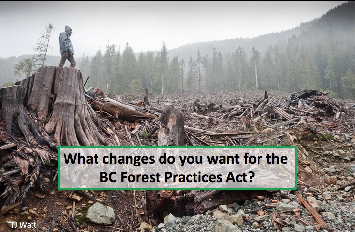 Forest Practices Act